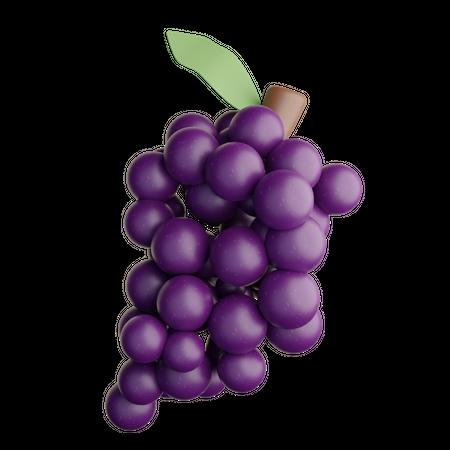 Grape 3D Illustration