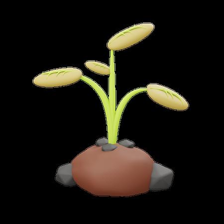 Plantation 3D Illustration